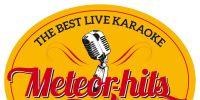quartier libre : karaoke live les 10 ans des meteorhits