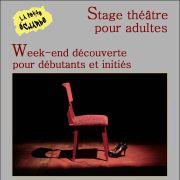 Week-end de Stage Découverte théâtre pour adultes à La Petite Echarde