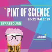 Festival Pint of Science : la science se fait mousser !