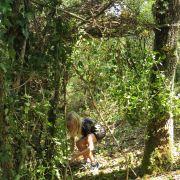 Vacances nature : Peaux rouges à la Maison de la nature pour les 6-12 ans