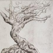 Au cœur de l\'arbre