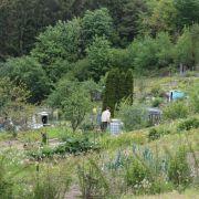 Visite découverte : les jardins du Val d\'Argent