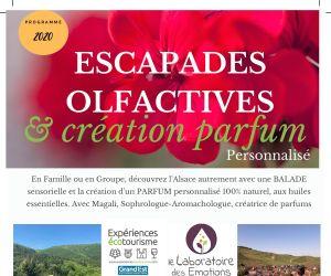 Balades olfactives et création de parfum