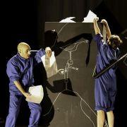 L\'oiseau Migrateur - théâtre visuel -