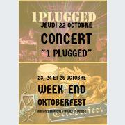 Concert 1 Plugged au bar L\'intenable Obernai