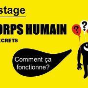 Mini-stage : le corps et ses secrets