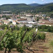 Visite guidée : la famille de Turckheim à Guebwiller