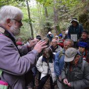 Herborisation sur les pentes du Badberg, haut-lieu botanique et réserve naturelle du Kaiserstuhl