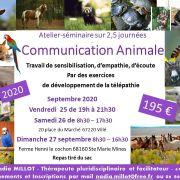 Communication animale - Séminaire 2.5 jours