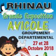 Exposition avicole du groupement départemental - Championnat régional du Beauté Allemand