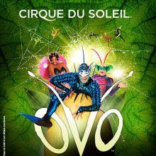 Le Cirque du Soleil : OVO