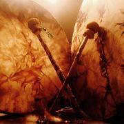 Conférence : Le chamanisme, un autre chemin vers soi