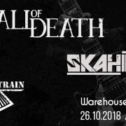 Fall Of Death - Skahinall - Smashing Train