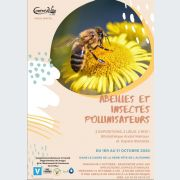L\'abeille : insecte social par excellence