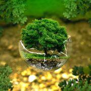Atelier participatif : charte environnementale Enjoy\'in hostel