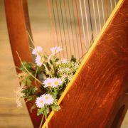 Week-end des harpes avec Camac