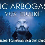 Luc Arbogast // Cathédrale Saint Dié de Saint Dié-des-Vosges