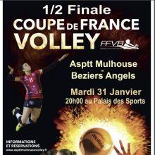 1/2 Finale Coupe de France de Volley 16/17 : ASPTT Mulhouse - Béziers Angels