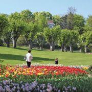 1 ville, 10 idées : Mulhouse