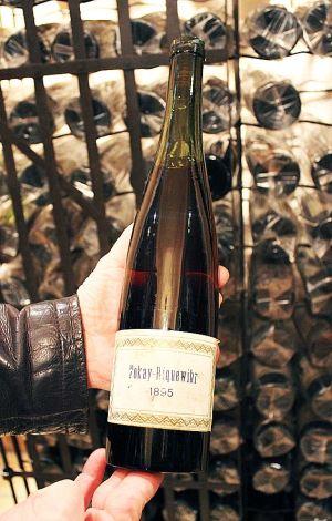 Le plus vieux Tokay d\'Alsace!