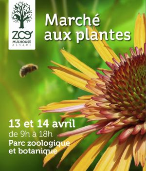 11ème Marché aux plantes du Zoo de Mulhouse 2013