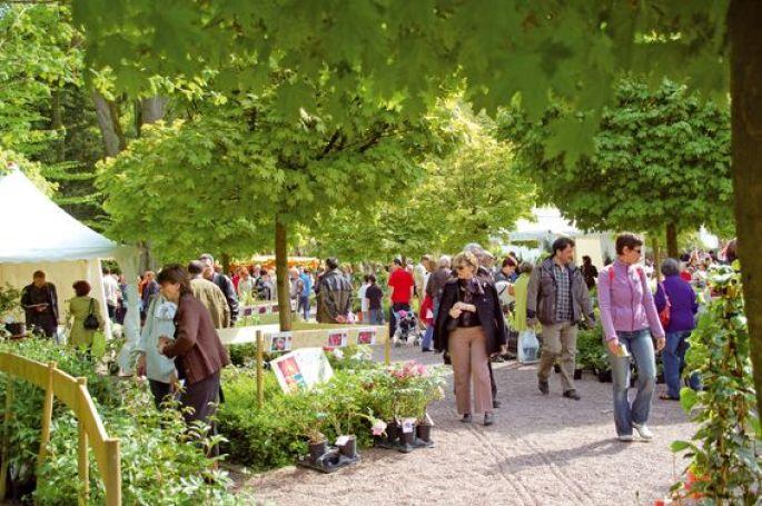 13ème Marché aux plantes du Zoo de Mulhouse 2015