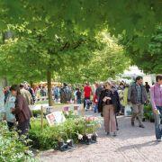 Marché aux Plantes du Zoo de Mulhouse 2018