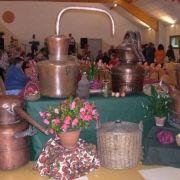 Fête de la Distillerie et du Pressoir à Wegscheid 2019