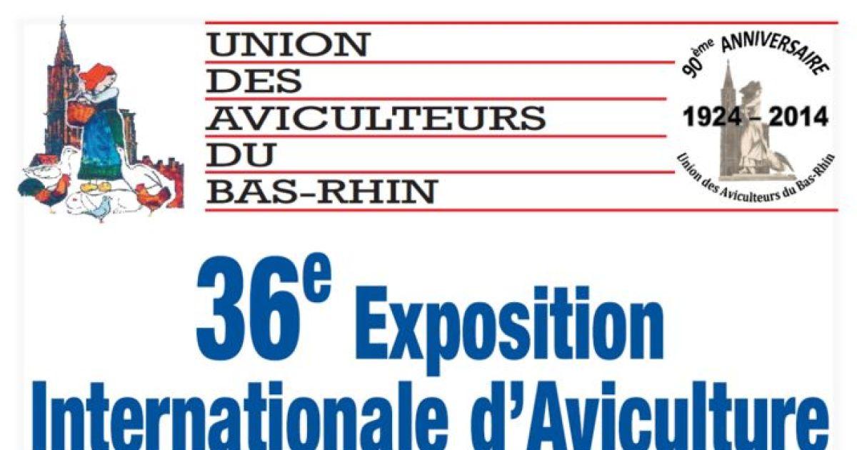 36 me exposition internationale d 39 avictulture strasbourg for Maison de l emploi strasbourg