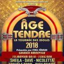 Âge tendre - La tournée des idoles