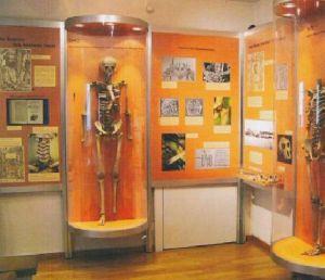 Anatomisches Museum der Universität Basel