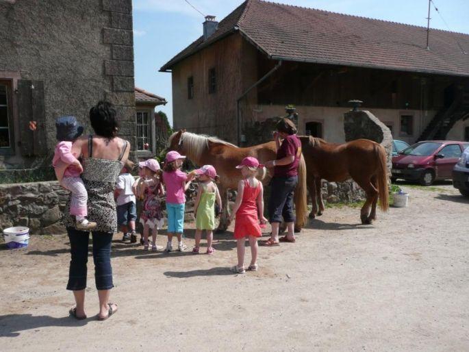 Anniversaire au Domaine Saint-Loup