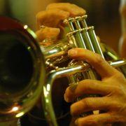 Voyage à travers les harpes