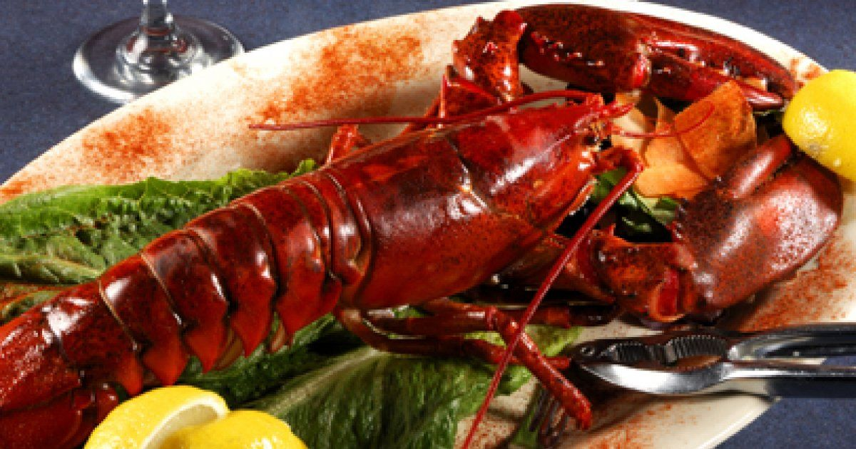 Le homard gallery - Comment cuisiner le homard ...