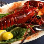 Apprenons à connaître le homard