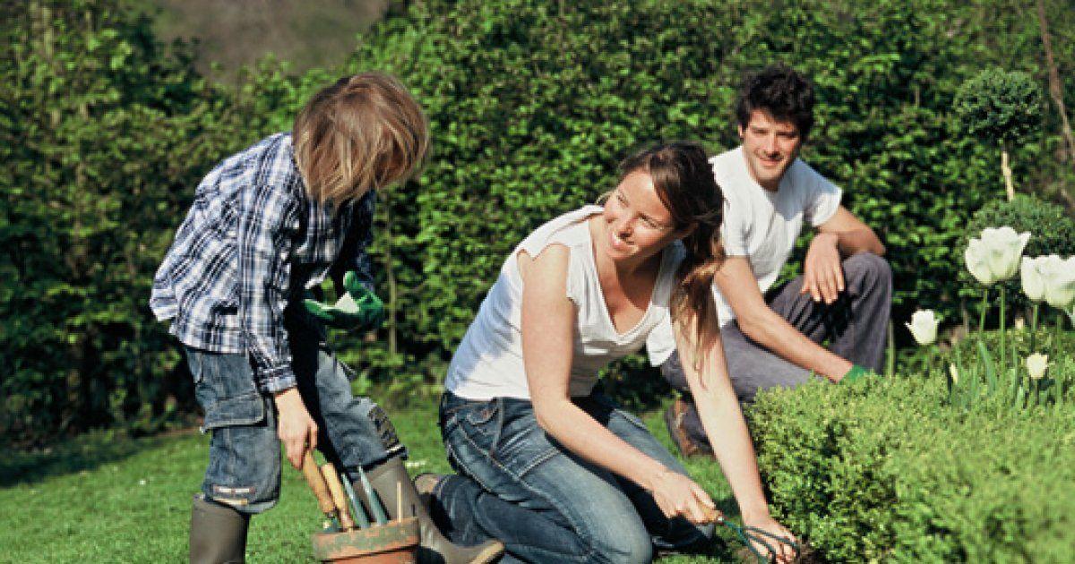alsace les ateliers jardinage cours enfants et adultes potager et fleurs. Black Bedroom Furniture Sets. Home Design Ideas