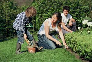 Des ateliers jardinage pour apprendre à s\'occuper de son jardin en famille