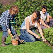 L\'entretien du jardin en avril