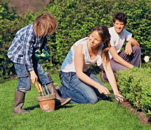 L\'entretien du jardin en avril : semences, pelouse, taille