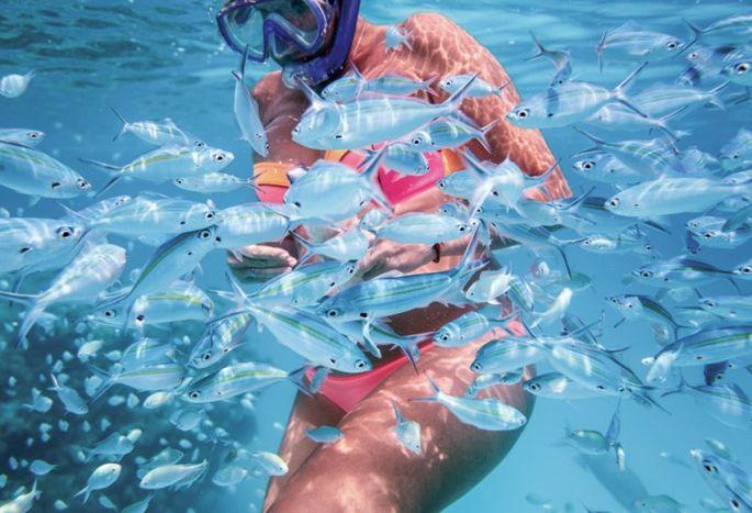Baignade et plongée !