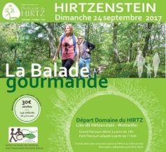 Balade Gourmande autour du Hirtzenstein