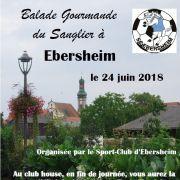 Balade gourmande du Sanglier à Ebersheim 2018