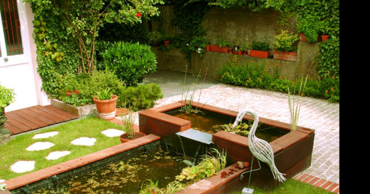 Jardin bassins des biotopes observer au quotidien for Entretien jardin haut rhin