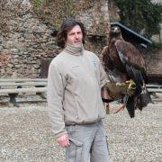 Rencontre avec Benoit Humler, dresseur de rapaces à la Volerie des Aigles