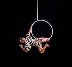 Biennale internationale des Arts du Cirque de Marseille