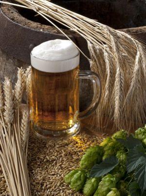 Il faut beaucoup de savoir-faire pour arriver à transformer le houblon et le malt en une succulente bière dorée