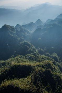 Biodiversité : l'inaccessible étoile - Massif du Matareambeo au Sulawesi