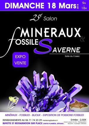 Bourse aux minéraux, fossiles et bijoux à Saverne 2018