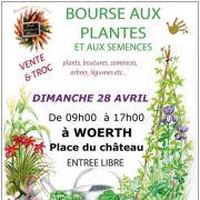 Bourse aux plantes - marché aux puces jardinage à Woerth 2019