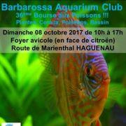Bourse aux poissons d\'aquarium Club de Haguenau 2018